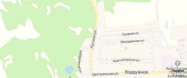 Луговая улица на карте Вздружного села с номерами домов