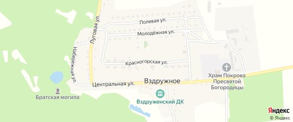 Красногорская улица на карте Вздружного села с номерами домов