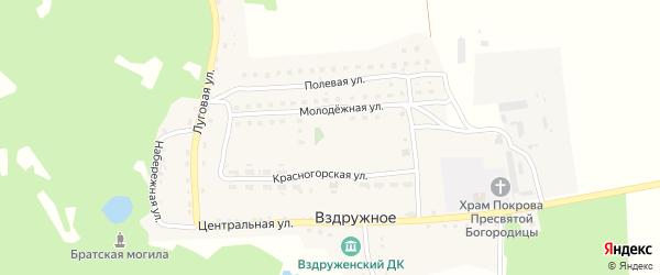 Молодежная улица на карте Вздружного села с номерами домов