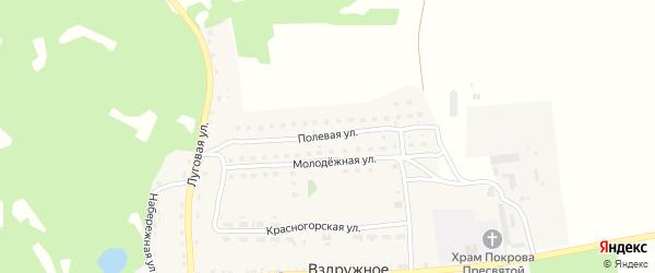 Полевая улица на карте Вздружного села с номерами домов