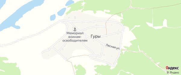 Лесная улица на карте поселка Гуры с номерами домов