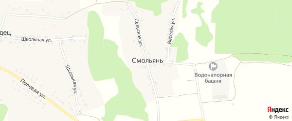 Сельская улица на карте деревни Смольяни с номерами домов