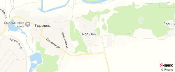 Карта деревни Смольяни в Брянской области с улицами и номерами домов
