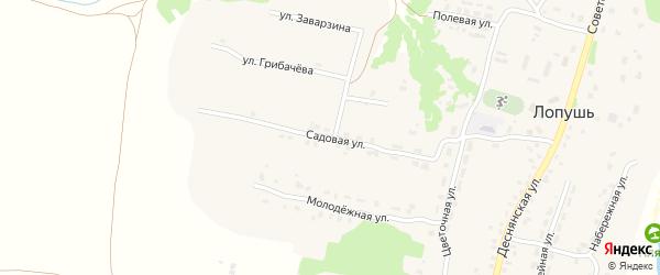 Садовая улица на карте села Лопуши с номерами домов