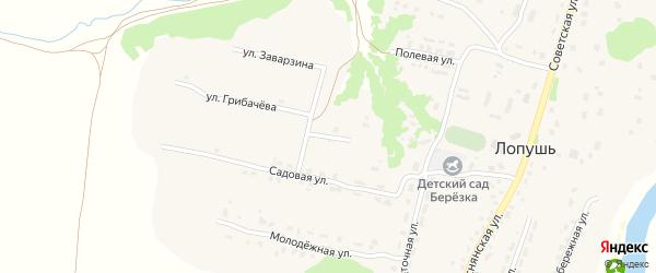 Весенний переулок на карте села Лопуши с номерами домов