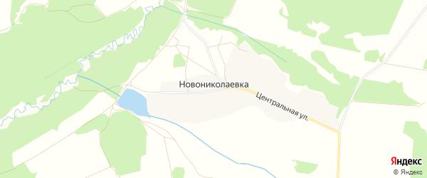 Карта деревни Новониколаевки в Брянской области с улицами и номерами домов