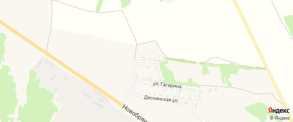 Переулок Гагарина на карте поселка Выгоничей с номерами домов