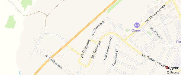 Улица Пушкина на карте поселка Выгоничей с номерами домов