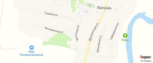 Цветочная улица на карте села Лопуши с номерами домов
