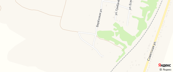 Отрадная улица на карте поселка Выгоничей с номерами домов