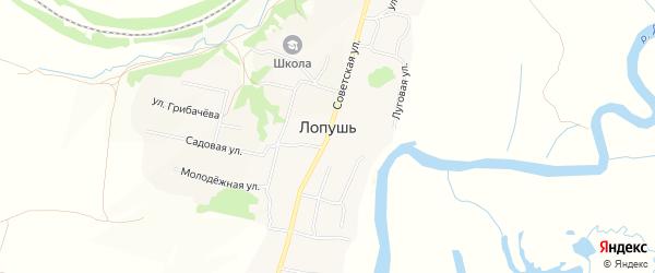 Карта села Лопуши в Брянской области с улицами и номерами домов