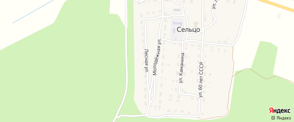 Лесная улица на карте деревни Сельца с номерами домов