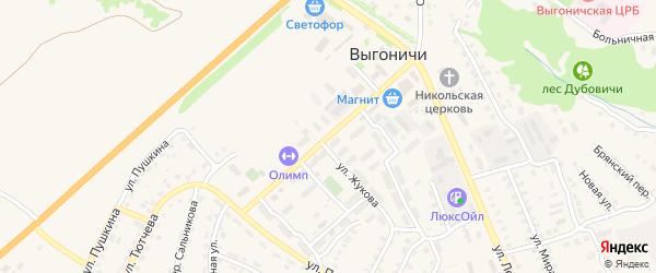 Улица Ломоносова на карте поселка Выгоничей с номерами домов
