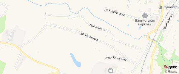 Улица Калинина на карте поселка Выгоничей с номерами домов