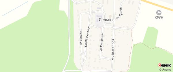 Молодежная улица на карте деревни Сельца с номерами домов