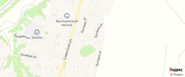 Луговая улица на карте села Лопуши с номерами домов