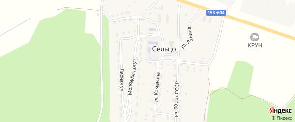 Заречная улица на карте деревни Сельца с номерами домов