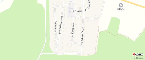 Улица Каманина на карте деревни Сельца с номерами домов