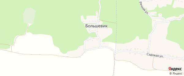 Дружная улица на карте поселка Большевика с номерами домов