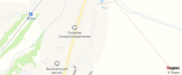 Улица Мелиораторов на карте поселка Выгоничей с номерами домов