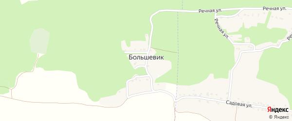 Лесная улица на карте поселка Большевика с номерами домов