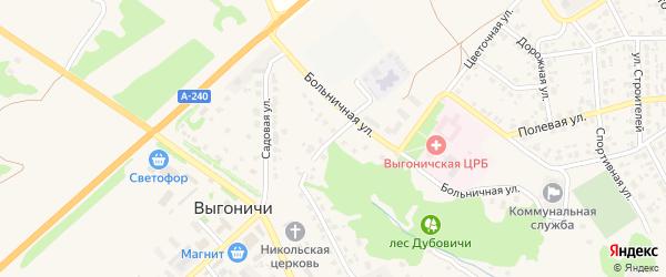 Парковая улица на карте поселка Выгоничей с номерами домов