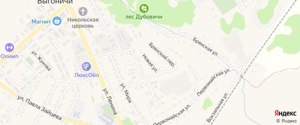 Новая улица на карте поселка Выгоничей с номерами домов