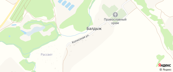 Колхозная улица на карте деревни Балдыжа с номерами домов