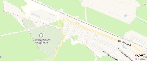 Переулок 1-й Лягина на карте Сельца с номерами домов