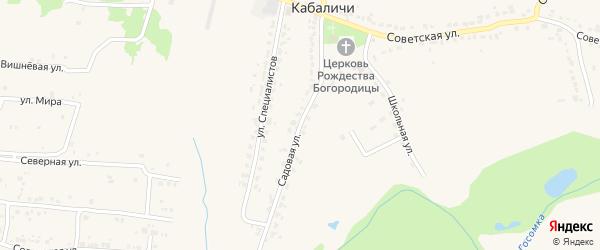 Садовая улица на карте села Кабаличи с номерами домов