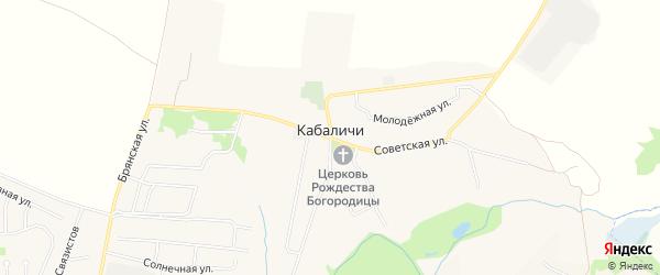 Карта села Кабаличи в Брянской области с улицами и номерами домов