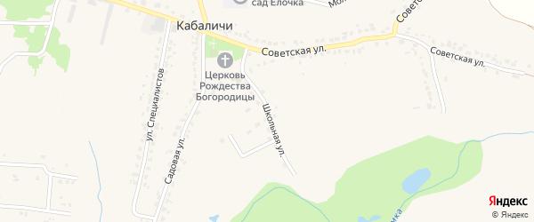 Школьная улица на карте села Кабаличи с номерами домов