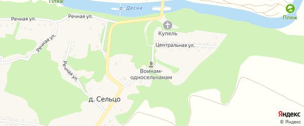 Центральная улица на карте деревни Сельца с номерами домов