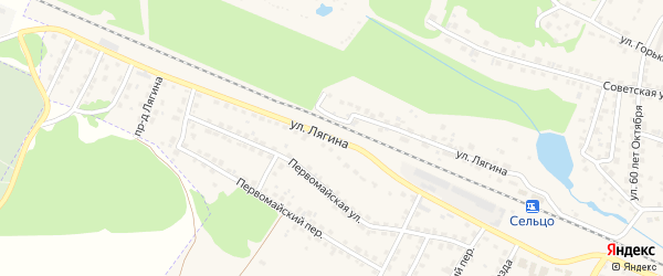 Улица Лягина на карте Сельца с номерами домов