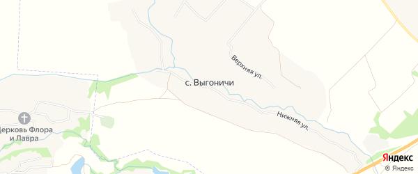 Карта села Выгоничей в Брянской области с улицами и номерами домов