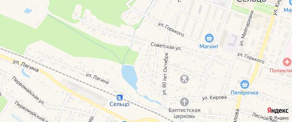 Переулок 2-й 60 лет Октября на карте Сельца с номерами домов