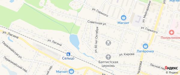 Переулок 1-й 60 лет Октября на карте Сельца с номерами домов