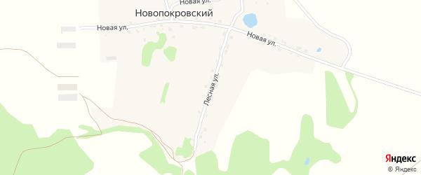 Лесная улица на карте Новопокровского поселка с номерами домов