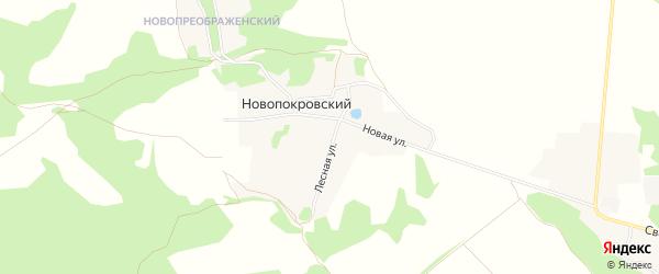 Карта Новопокровского поселка в Брянской области с улицами и номерами домов