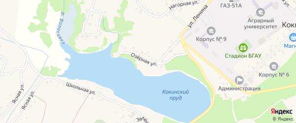 Озерная улица на карте села Кокино с номерами домов