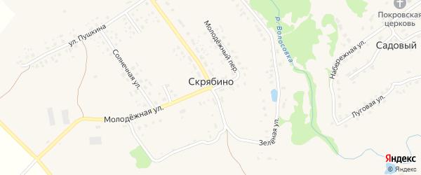 Переулок Пушкина на карте деревни Скрябино с номерами домов