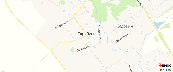 Карта деревни Скрябино в Брянской области с улицами и номерами домов