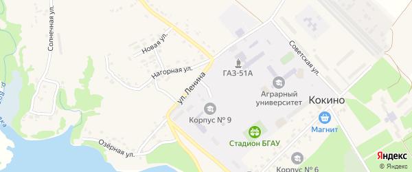 Парковый переулок на карте села Кокино с номерами домов