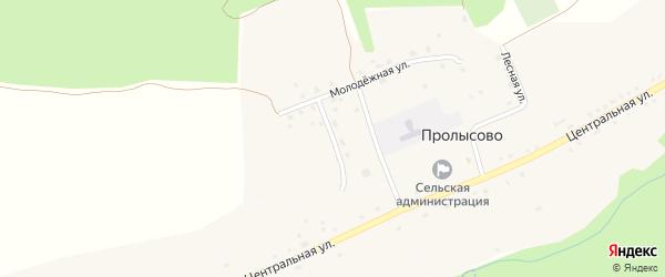 Молодежный переулок на карте села Пролысово с номерами домов