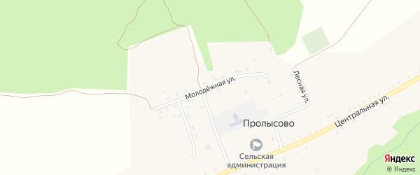 Молодежная улица на карте села Пролысово с номерами домов