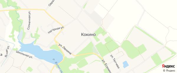 Территория Третий дачный массив на карте села Кокино с номерами домов