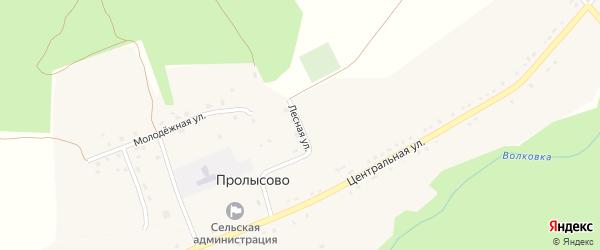 Лесная улица на карте села Пролысово с номерами домов