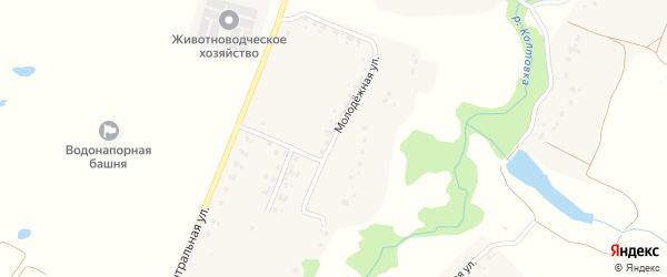 Молодежная улица на карте деревни Староселья с номерами домов