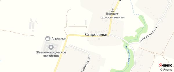 Центральная улица на карте деревни Староселья с номерами домов