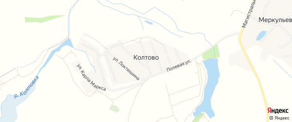 Карта деревни Колтово в Брянской области с улицами и номерами домов